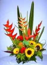 Floristeria Neiva Colombia Flores Neiva Rosas Neiva
