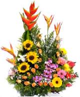 Arreglos Florales Exóticos