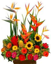 Flores Colombiaarreglos Florales Colombia Flores Bogota