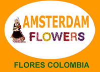 Flores Colombia