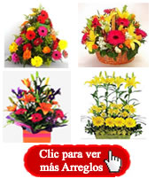 Flores A Bogota Enviar Con Flores Bogota Floristeria